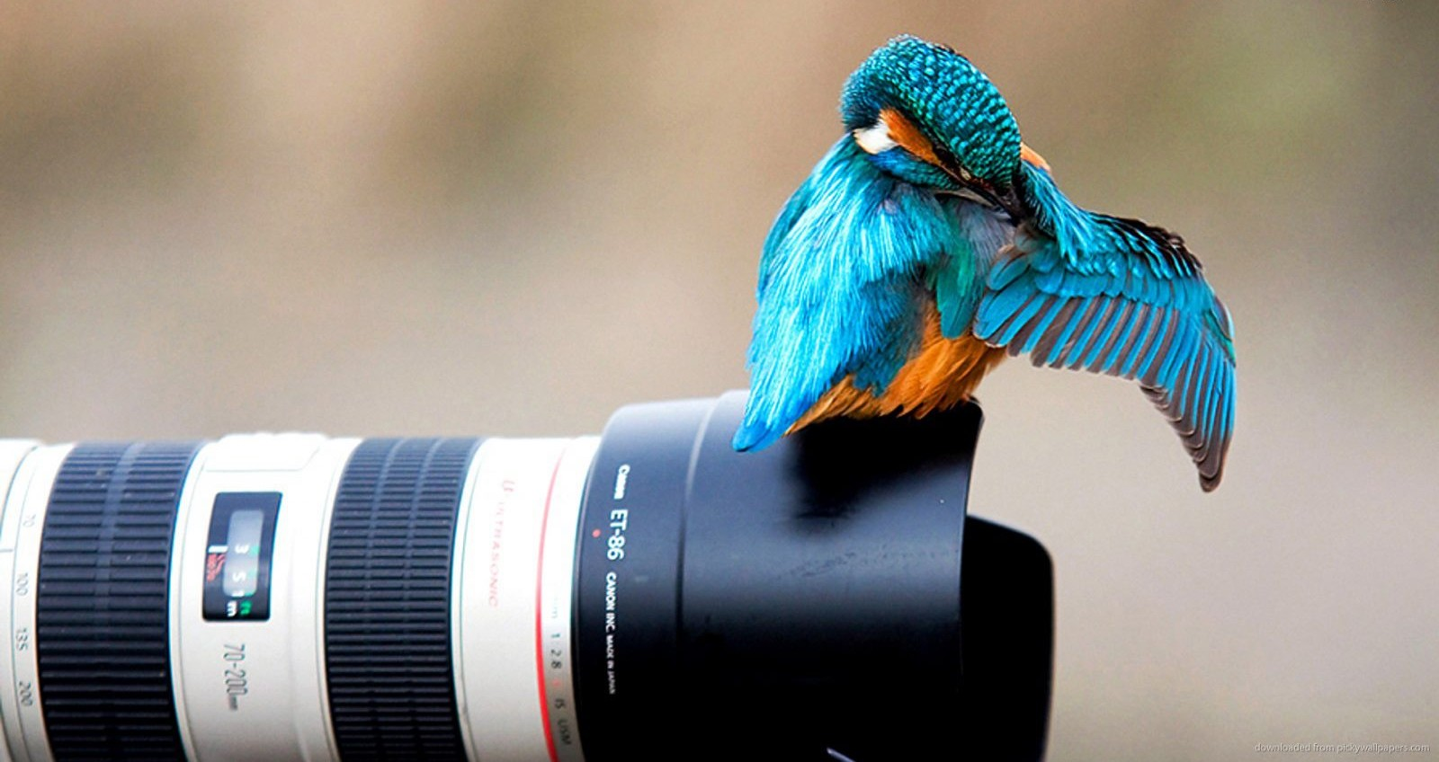 Get the right lens for the job